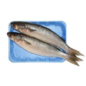 Biyah Fish 500g