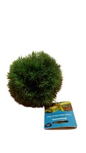 Rosewood Small Moss Ball 14cm Dark Green 1pc