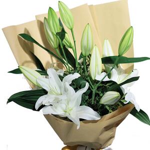 Trio Lilies 6 stems