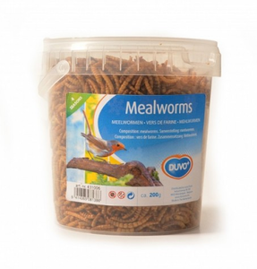 Duvo Meal Worms Bucket (431006) Brown 200g