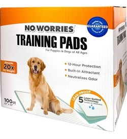 No Worries Training Pads 100pcs