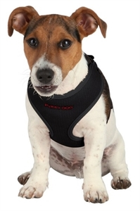 Trixie Puppy Harness Set Black  Medium 1pc