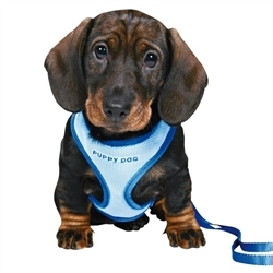 Trixie Puppy Harness Set Blue Small 1pc