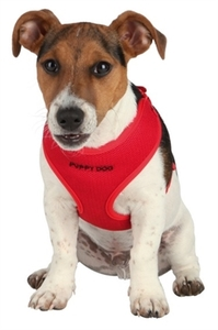 Trixie Red Puppy Harness Set Medium 1pc