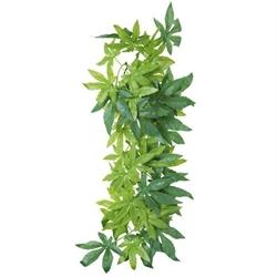 Trixie Silk Plant Abutilon 20x50 cm