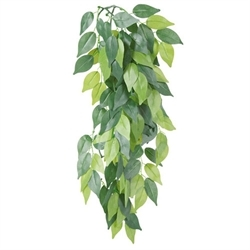 Trixie Silk Plant Ficus 20x50cm