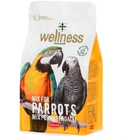 Wellness Parrot 1pc