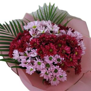 Bouquet Of Mix Chrysanthemum 10 stems