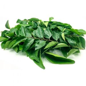 Curry Leaves India 1pk