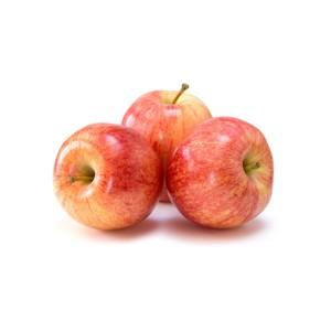 Organic Apple Gala 1pk