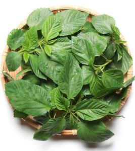 Molokhia Leaves 1bunch