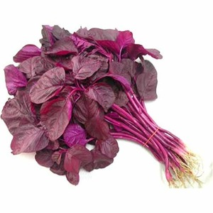 Red Palak Leaves 1bunch