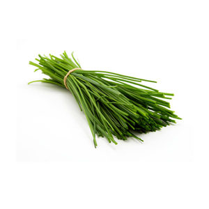 Chives Holland 30g