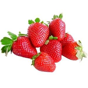Strawberry Morocco 500g