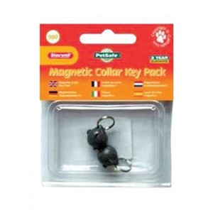 Pet Safe Collar Key Pack Silver 300g