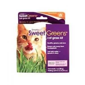 Smartykat Sweet Greens Kit Cat Grass Grow Kit 250g