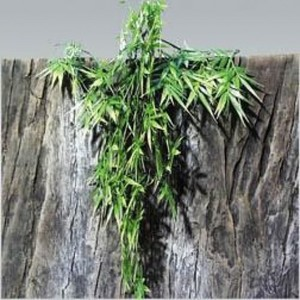 Jbl Terraplanta Madagascan Bamboo Small 200g