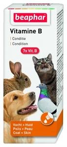 Beapher Vitamin B Complex 50ml