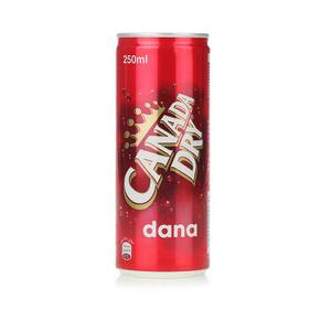 Canada Dry Dana 250ml