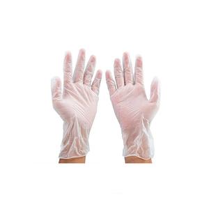 Vinyl Gloves Pre Powdered 100pcs