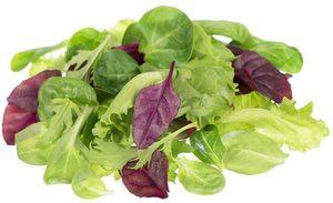 Ripe Organic Lettuce Mix Italy 100g pack
