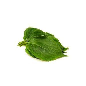 Shiso, Perilla Leaves 100g