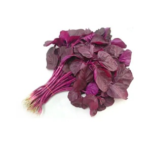 Red Palak Cheera Leaves 1 bunch
