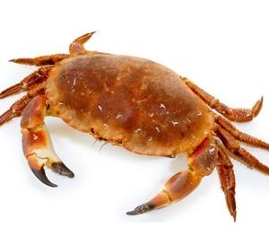 Crabs 500g