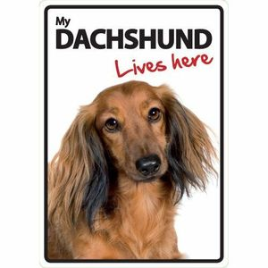Magnet & Steel My Dachshund Lives Here Sign 21x15cm