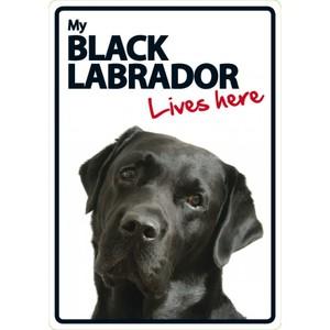 Magnet & Steel My Black Labrador Lives Here Sign 21x15cm
