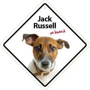 Magnet & Steel Jack Russell On Board Sign 14x14cm