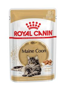 Royal Canin Maine Coon Wet Food In Gravy For Adult Cats 85g