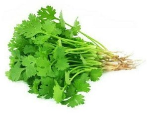 Coriander Leaves 1bunch
