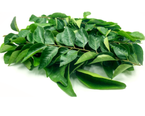 Curry Leaves India 50g