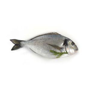 Sea Bream 500g