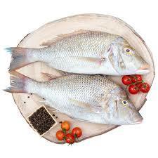 Shiery Fish 500g