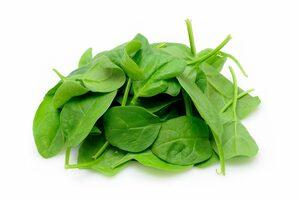 Baby Spinach 1pkt