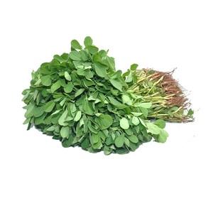 Fenugreek Leaves 1bunch