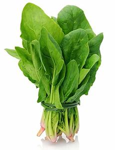 Palak Leaves 1bunch