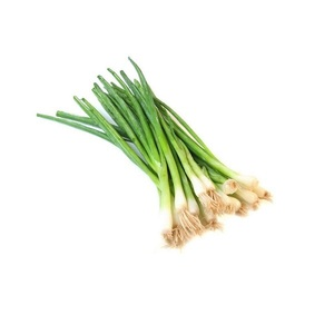 Spring Onion Leaves 1bunch