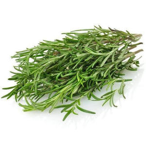 Rosemary Leaves 1bunch