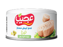 Ajeeb Wihte Meat Tuna Sunflower Oil 3x170g