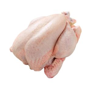 Qualiko Frozen Chicken Whole 1200g-1300g