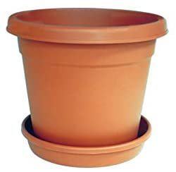 """Cosmoplast Round Flower Pot 6"""" With Tray 1pc"""