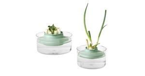 Brabantia Herbs Vegetables Regrow Kit Jade Green 1pc