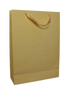 Alras Gift Bag Shiney Large # 815 1pc