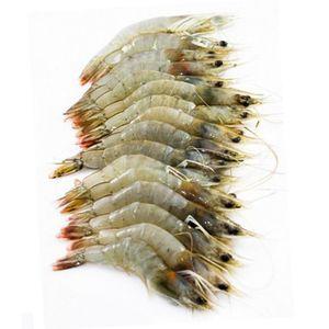 Shrimps 40-60 1kg