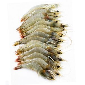 Shrimps 40-60 500g