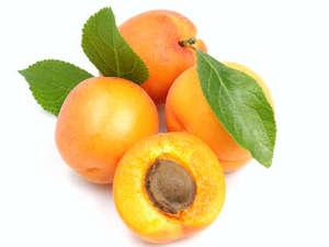 Apricot Lebanon Pack 14-15pcs per pack
