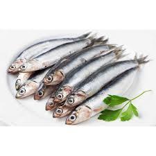 Sardines Oman Big 500g